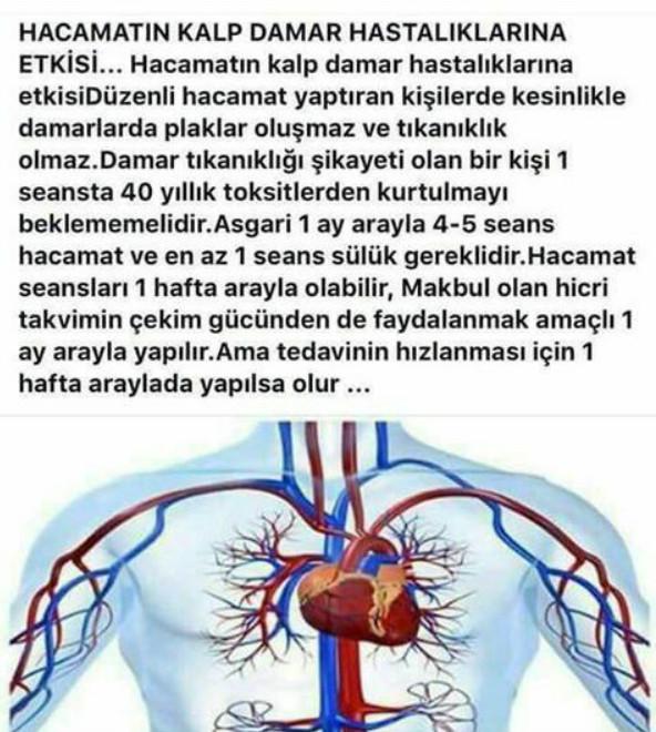 HACAMAT VE SÜLÜK TEDAVİSİ TORBALI-713